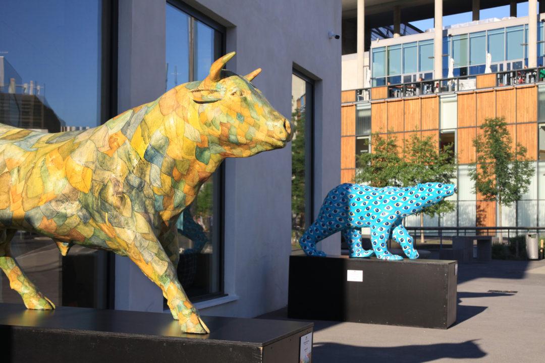 biennale des lions port rambaud